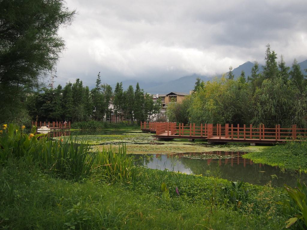 污水處理設施的淨水池。攝影:陳宣竹