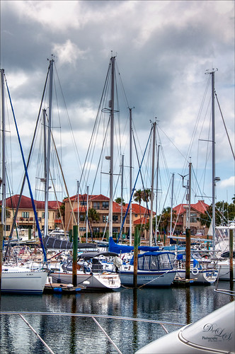 Image of sailboats at Camachee Cove Marina