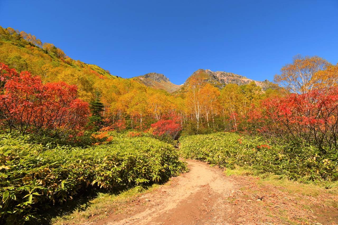 登山道広場からの焼岳と紅葉