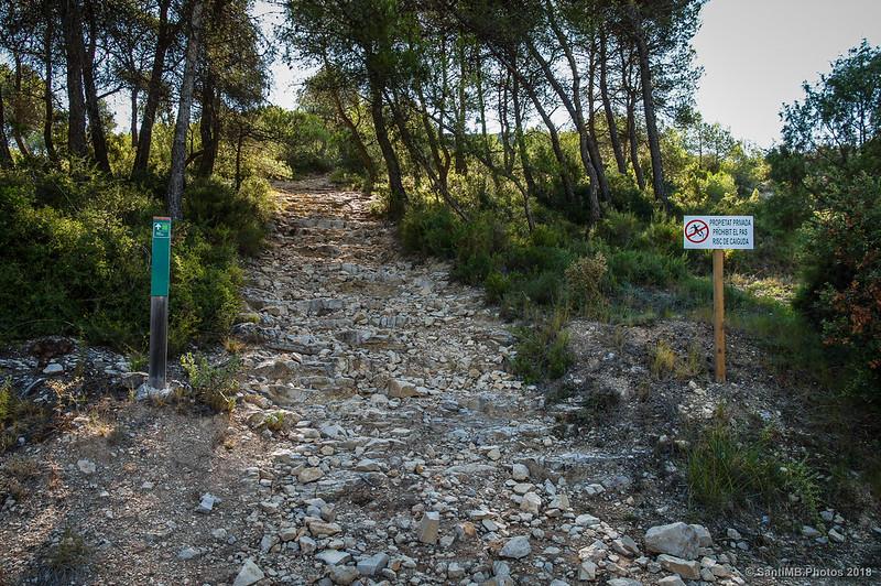 Camino al Castell d'Olèrdola desde el Fondo de la Vall