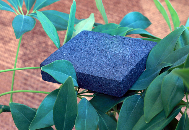A blue carbon foam resting on top of leaves
