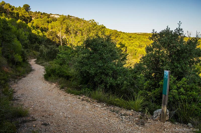 Camino de la Font de l'Alba