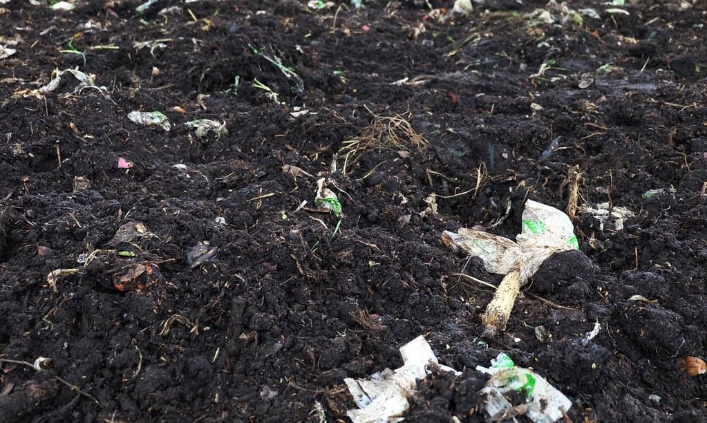 慈心農場將可分解塑膠袋進行堆肥處理(約一個月後的情況)