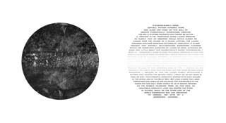 The Lichen Map by Andrew Beckham