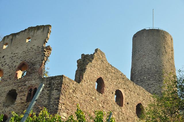 Schriesheim - Wein von der badischen Bergstraße - Weinberge, Weinlagen, Kuhberg - Strahlenburg - Blick auf die Stadt und in die Rheinebene ... Foto(s): Brigitte Stolle 2018