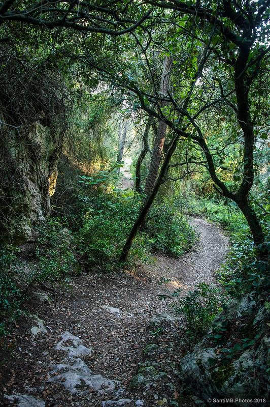 Ruta de les Fonts d'Olèrdola