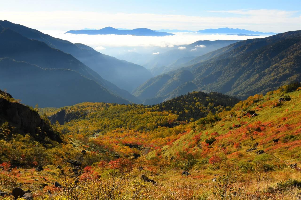 焼岳の紅葉と雲海の果てに鉢盛山