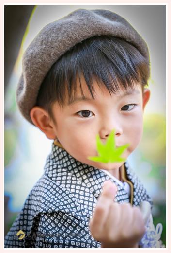 七五三 モミジの葉を持つ5歳の男の子
