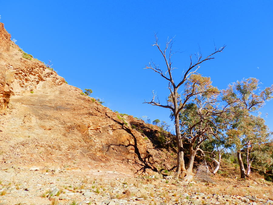 Outback Scenery on Blinman Pools Hike, Angorichina, Northern Flinders Ranges