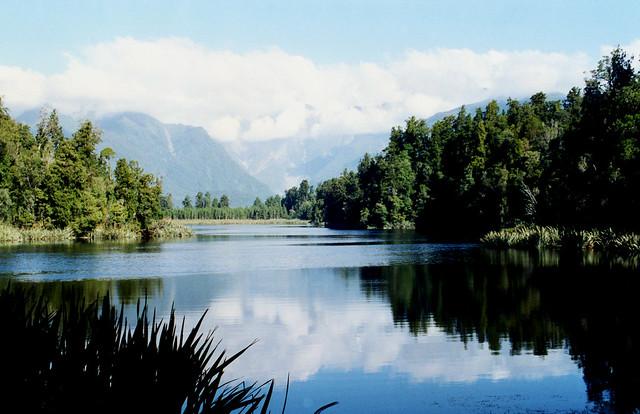2000 New Zealand 115