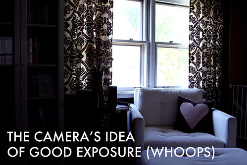 Photo Tips: The Camera's Idea of Good Exposure (Whoops) | by Nicole Balch