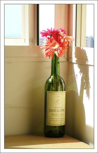 Flowers with Wine :) | by anshu_si