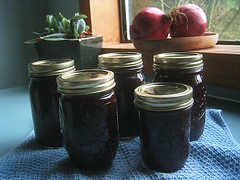 Blueberry Apple Conserve | by Silver Creek Garden