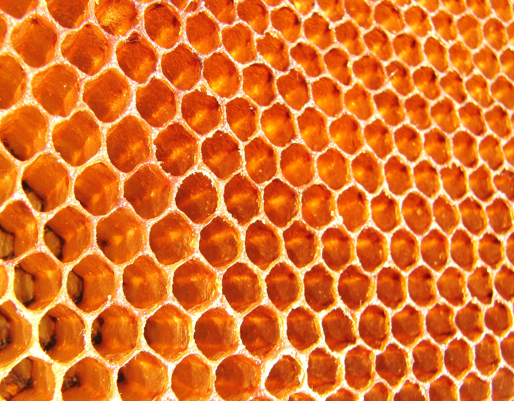 Grids in nature - Honeycomb