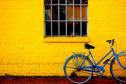 blue and yellow | by Christina Saull