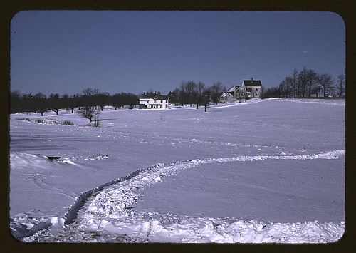 Massachusetts farm, possibly around Brockton, Mass.  (LOC) | by The Library of Congress