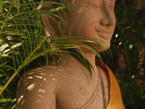 Buddha within the green | by magical-world