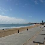 Mar Bella. Barcelona. 2.11.09 250