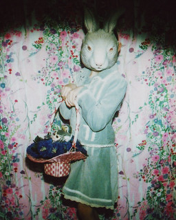spotlight on: the easter bunny | by pamelaklaffke