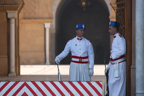 Palace Guards | by Lukas Vermeer