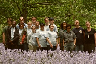 Moody's Volunteers in Bluebell Wood | by Brooklyn Botanic Garden