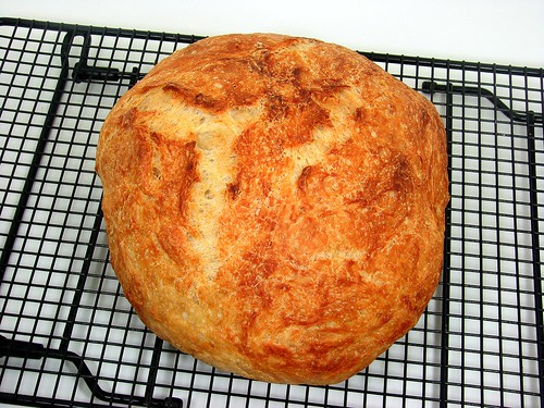 Speedy No-Knead Bread | by Tracey's Culinary Adventures