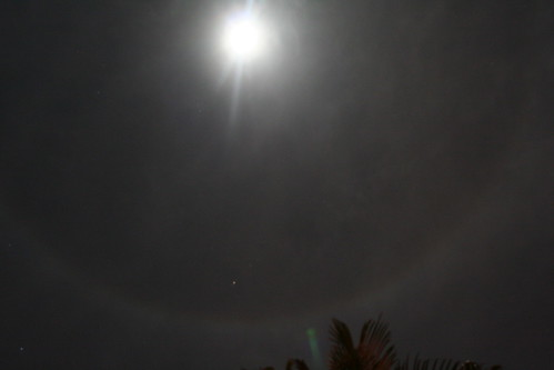 ring around the moon flickr photo