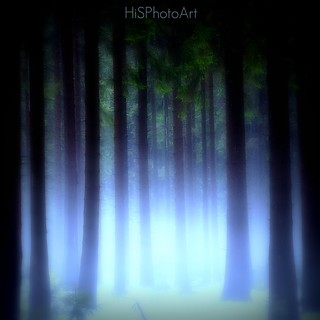 DEEP FOREST | by HiS***PhotoArt
