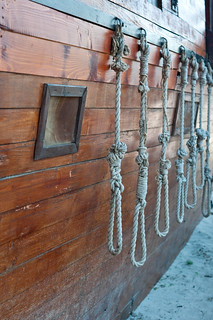 Group of hanging ropes each with a noose at the end | by Horia Varlan
