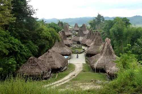 Sumba ouest-Waikabukak-Praiijing-village (42)
