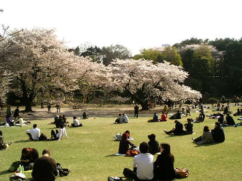 Shinjuku Gyoen | by Blue Lotus