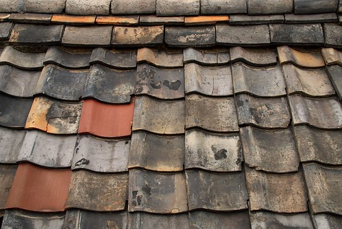 Roof Tiles | by Focx Photography