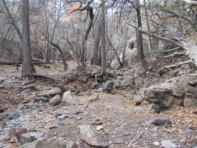 28_Boot Canyon Trail