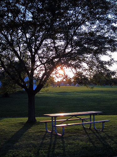 Sunset at the park