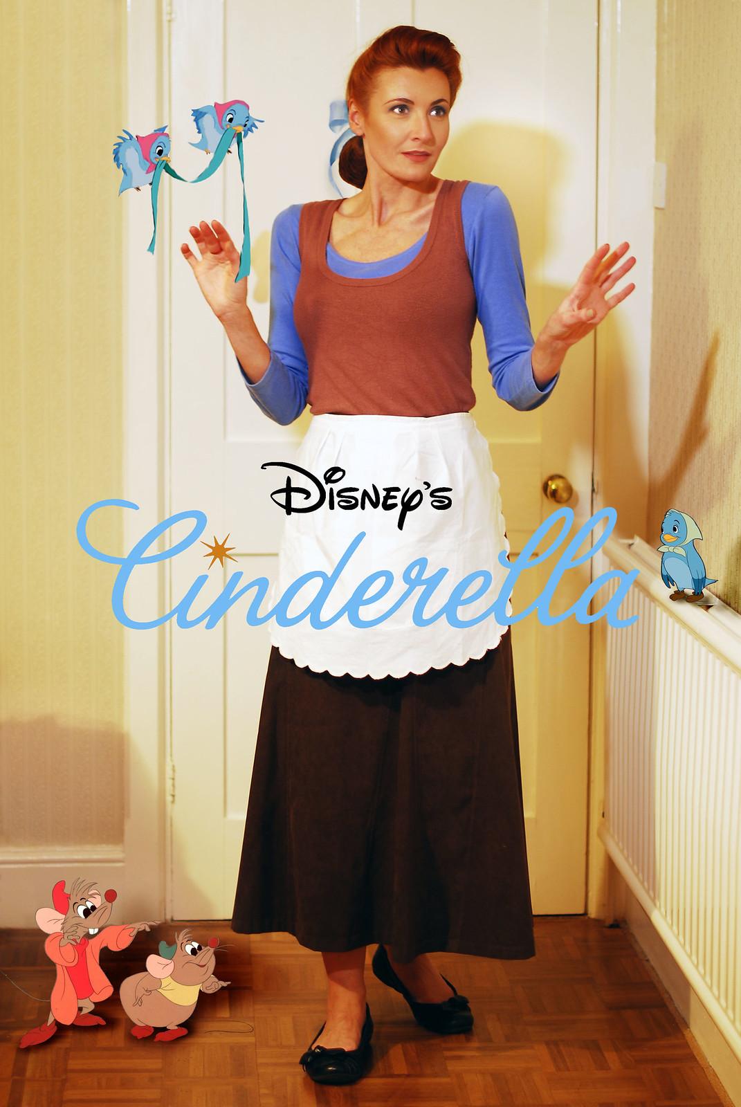 Cinderella in rags fancy dress costume