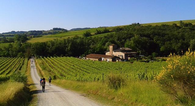 via Francigena verso S . Gimignano Toscana