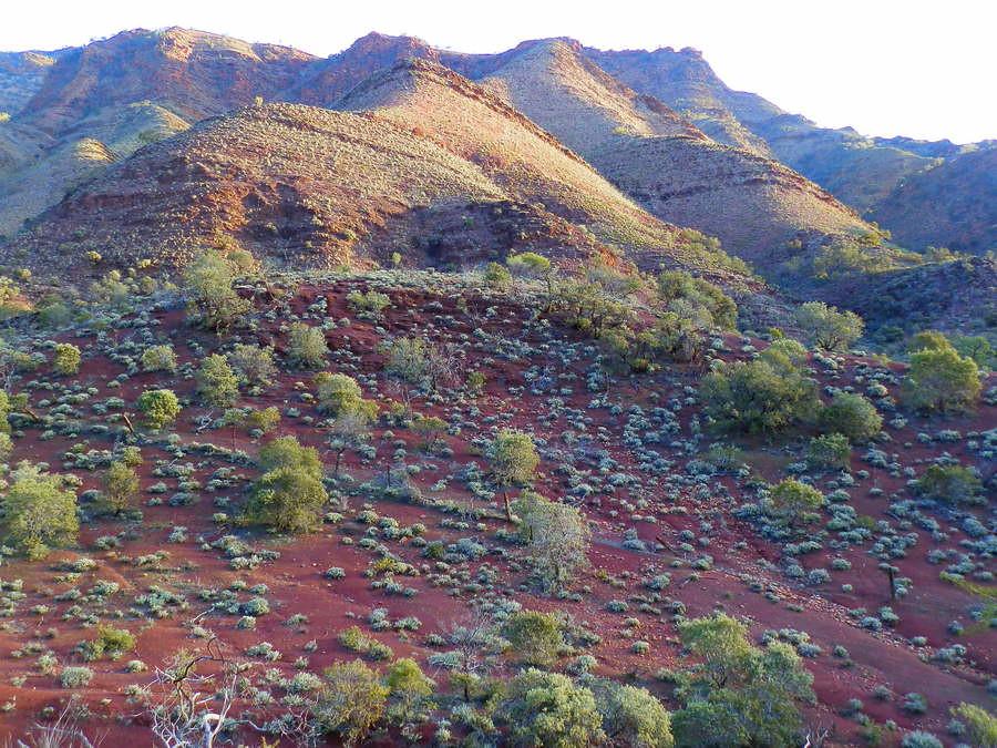 Heysen Trail Scene, Parachilna Gorge, via Angorichina, Northern Flinders Ranges