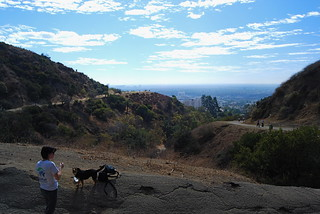 Runyon and My Two Ladies | by manmadepants