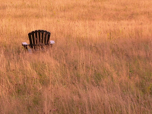 Adirondack Chair | by alicekelly1989