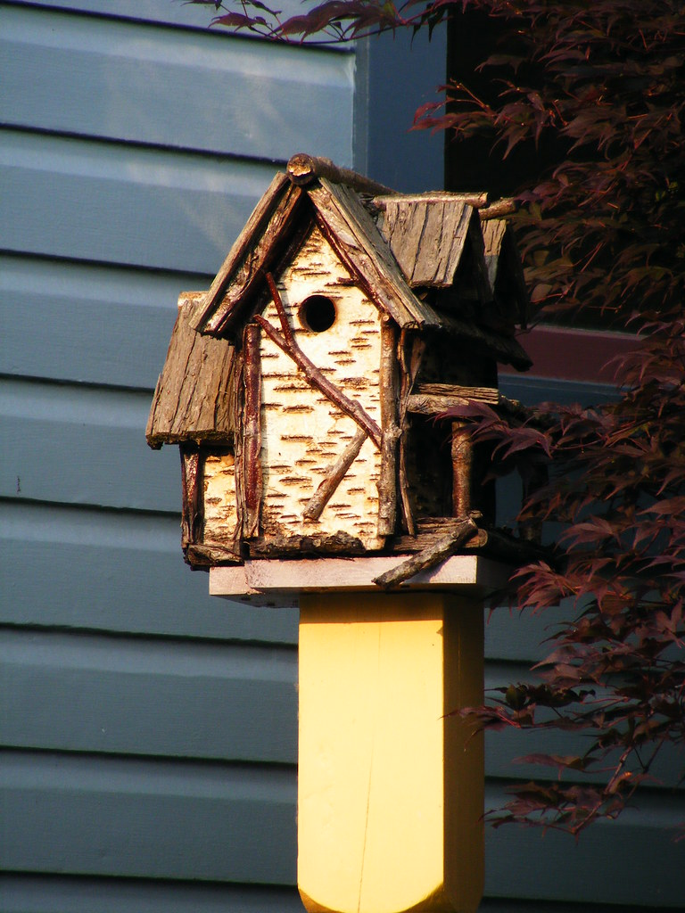 Birdhouse the birdhouse out in the front yard of the c for White birch log crafts