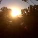 dakity sunrise