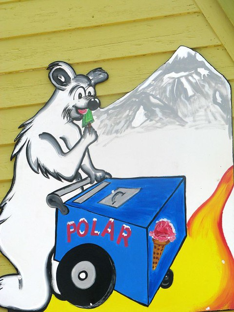 Hungry Polar Bear He Apparently Likes The Lime Popsicle O Flickr