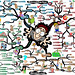 steps-for-overcoming-your-fears-mind-map