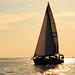 hazy sunset sail