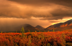 Rainstorm Over Tundra | by kevin mcneal