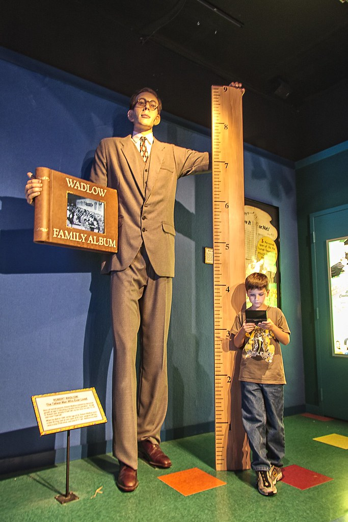 game boy with the worlds tallest man robert wadlow