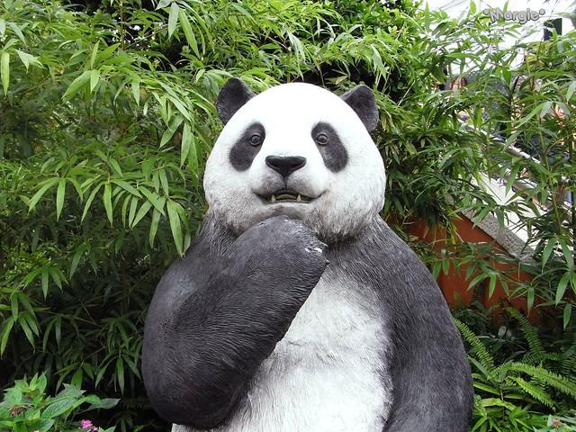 The gallery for --> Giant Panda Habitat Map