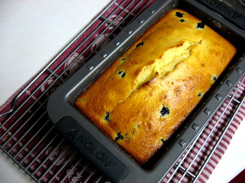 """Dad-approved"" Blueberry Lemon Loaf - Cool in the pan 