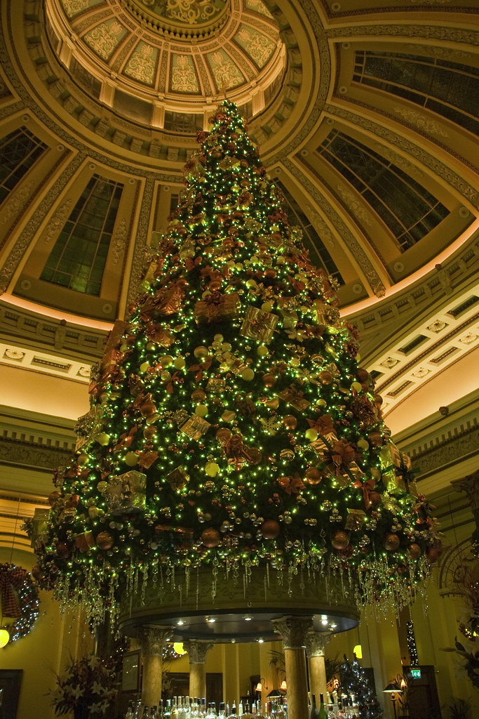Christmas Tree Inside The Dome George St Edinburgh Flickr