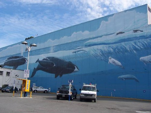 Wyland Whale Mural | On the east side of Town Square, on E ...